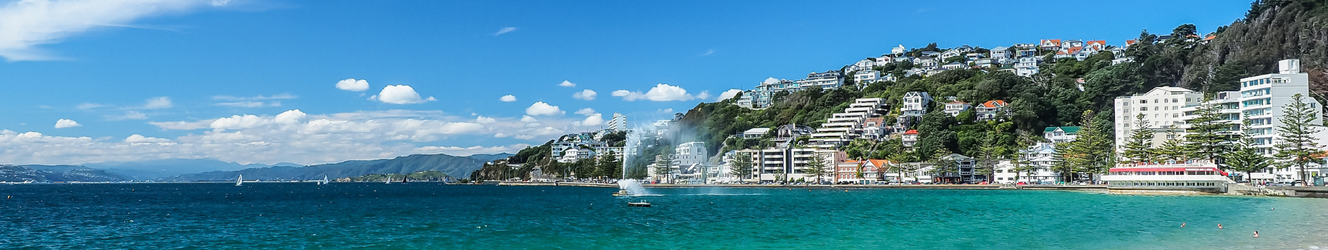 Digital Nomad Guide on Where to Stay in Wellington